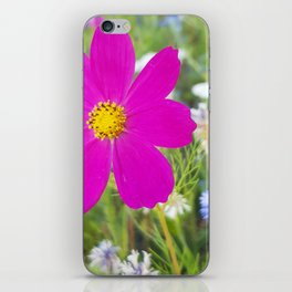 Flowers Go Wild in Wimbledon 5 - Cosmos the bold iPhone Skin