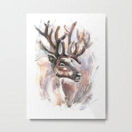 Reindeer. Metal Print