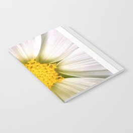 Daisy Notebook