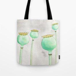 Four Poppy Pods Tote Bag