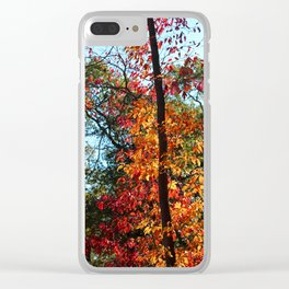 The Renegade's Heart Clear iPhone Case