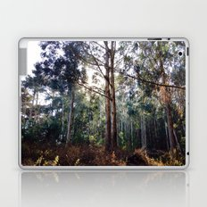 Presidio of San Francisco Laptop & iPad Skin