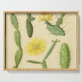Botanical Cacti Serving Tray