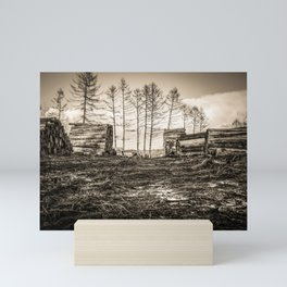 Poltery Site (Wood Storage Area) After Storm Victoria Möhne Forest sepia Mini Art Print