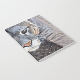 Just Chillin - Cougar Painting by Alan M Hunt Notebook