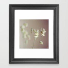 Spring bouquet III Framed Art Print