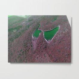 Butterfly Lake in Green Metal Print