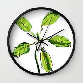 New Growth Wall Clock