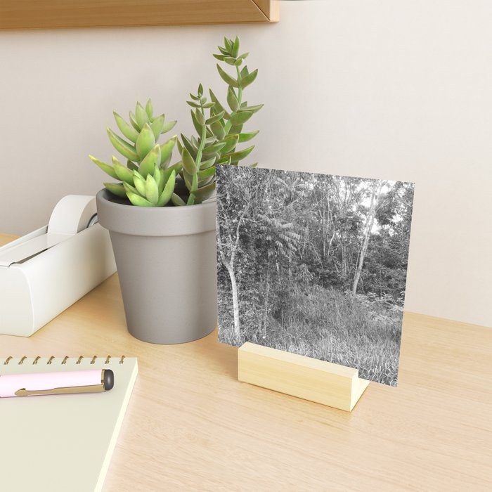 The Forest in Monochrome Mini Art Print
