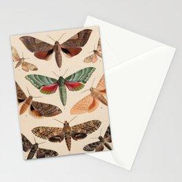 Vintage Natural History Moths Stationery Cards
