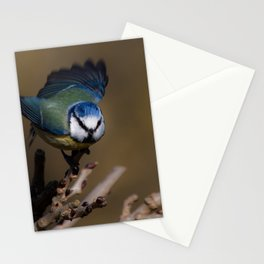 Blue tit about to fly off Stationery Cards
