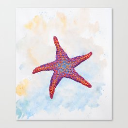 Hoopless: Washed Up Star Canvas Print