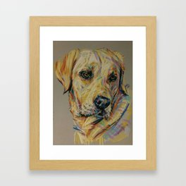 Yellow Labrador Framed Art Print