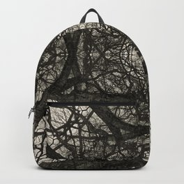 Branching Symmetry Backpack