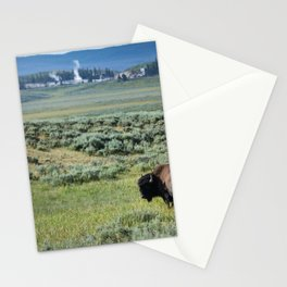 A Bull Bison Heads Towards Thermal Activity in the Hayden Valley of Yellowstone National Park Stationery Cards