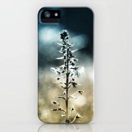 Ametrin iPhone Case