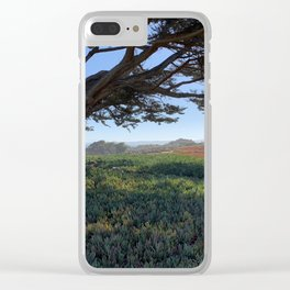 Wind blown tree along the California coast, Monterey Bay Clear iPhone Case