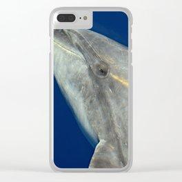 Bottlenose dolphin portrait Clear iPhone Case
