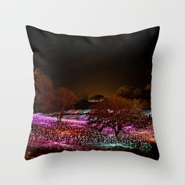Field of Light Throw Pillow