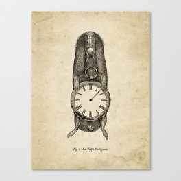 A Clockwork Mole Canvas Print