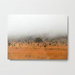safari fog Metal Print