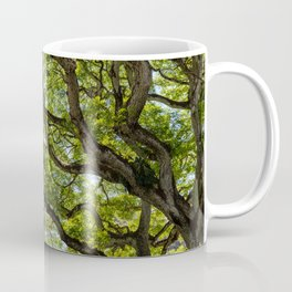 river of branches Coffee Mug