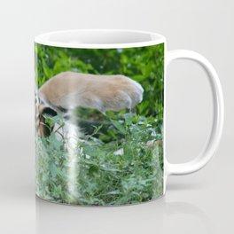 Swat the Fly Coffee Mug