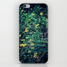 A Flower a Day Keeps the Doctor Away iPhone & iPod Skin