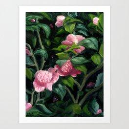 Japanese Camellia Floral Impressionist Oil Art Print