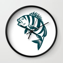 Sheepshead Fish Jumping Isolated Retro Wall Clock