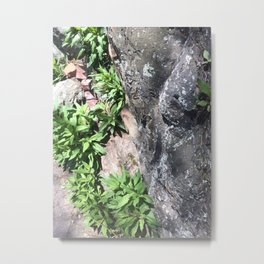 Intimate Tree#5 Metal Print