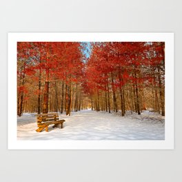 Ruby Winter Trail Art Print
