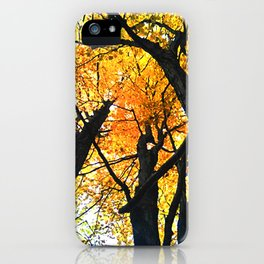 Guelph Lake Leaves iPhone Case