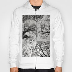 Meditative Power of Trees Hoody