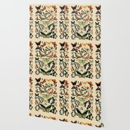 Papillon I Vintage French Butterfly Charts by Adolphe Millot Wallpaper