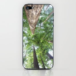 In the Land of Giants iPhone Skin