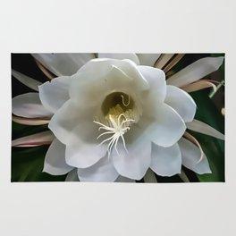 Cereus Rug