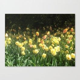 Vanitas Tulips 2 Canvas Print