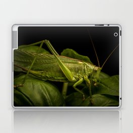 Locust macro shot Laptop & iPad Skin