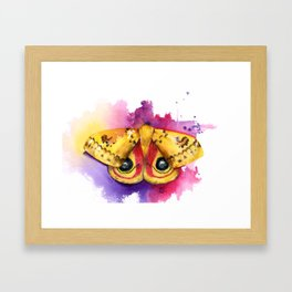 Io Moth Framed Art Print