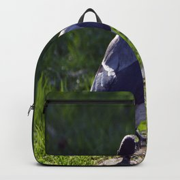 Crow Backpack