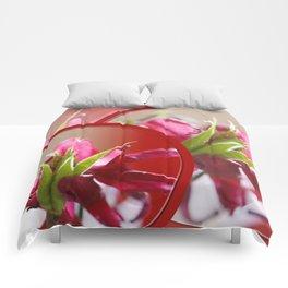 Congrats Comforters