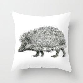 Funny Hedgehog SK050 Throw Pillow