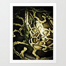 Ssssnake Art Print