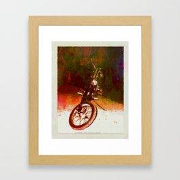 FLATHEAD - 043 Framed Art Print