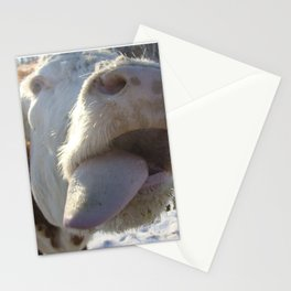 Kiss Me Beautiful Stationery Cards
