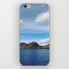 Wild Acadia iPhone & iPod Skin