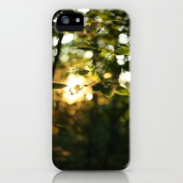 All the Pretty Colors iPhone Case