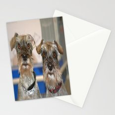 funny Dogs Stationery Cards