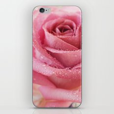 Pink Rose Macro Photograph in vintage pastel tones iPhone & iPod Skin